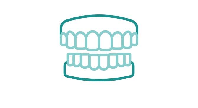 乳歯なのに歯と歯の間に隙間がないイメージ画像